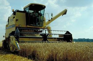 Récolte blé. Photo de Jean-Marie BOSSENNEC, Médiathèque INRA